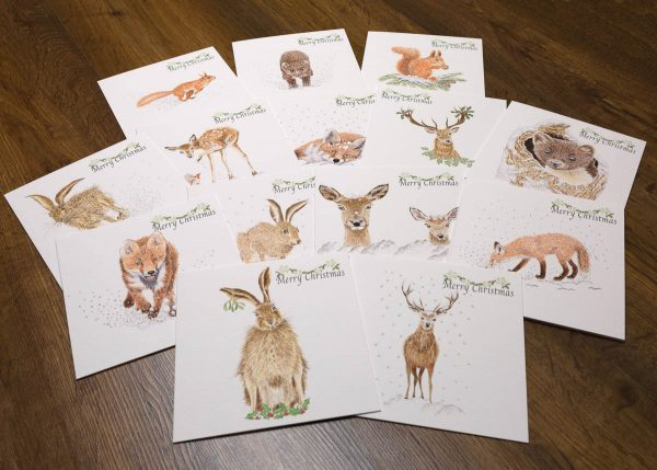 assorted wildlife watercolour christmas cards