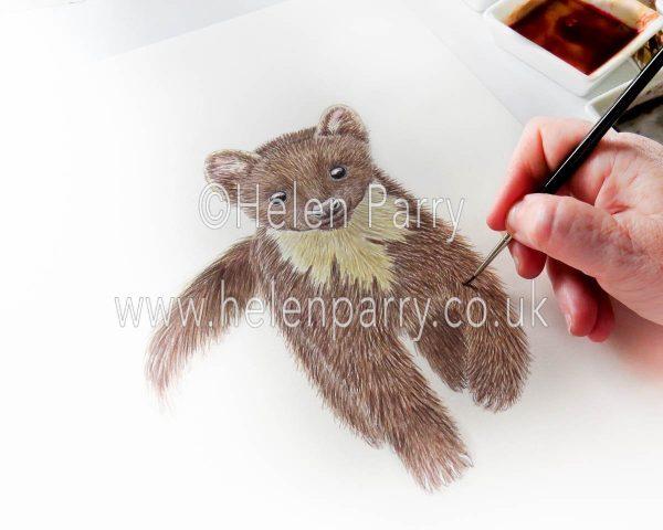 work in progress pine marten watercolour design