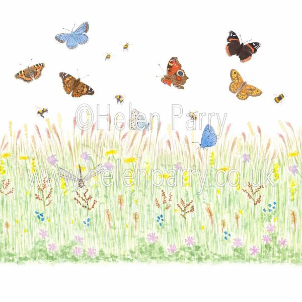 greeting card butterfly meadow with wild flowers dragonfly butterflies and bees