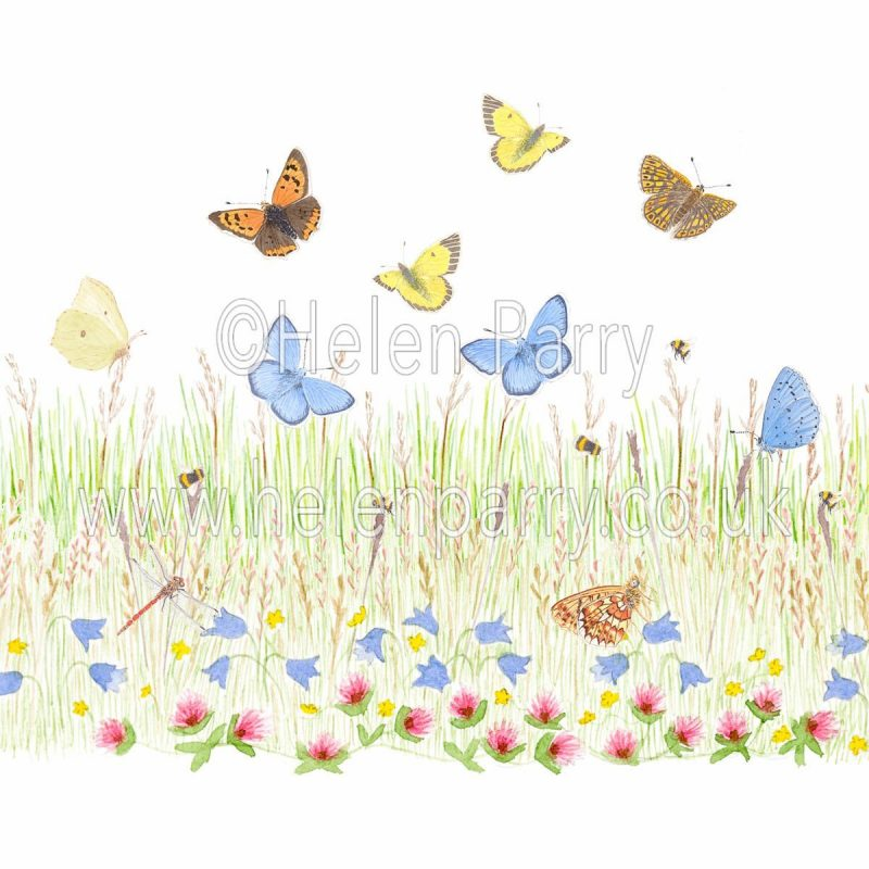 greeting card harebell and clover meadow with butterflies, dragonflies and bees