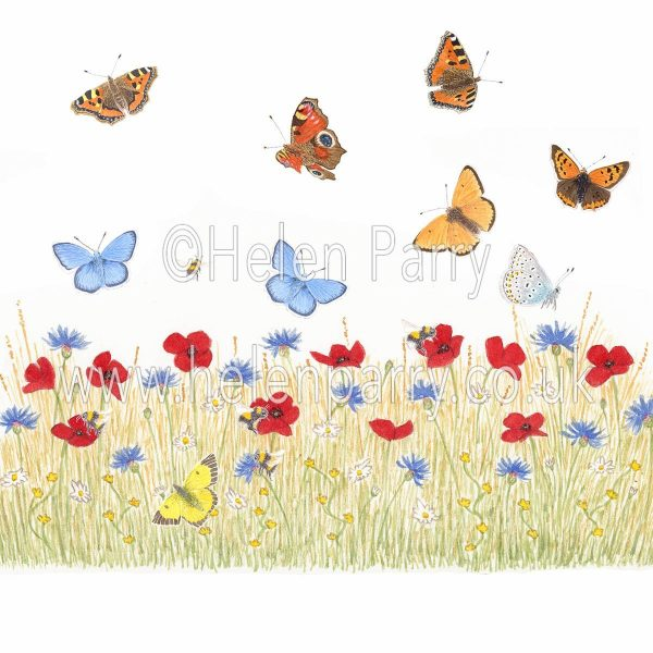 framed greeting card summer meadow of poppies, cornflowers, daises, bees and butterflies