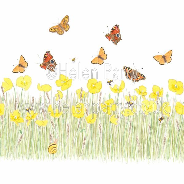 yellow poppy meadow greeting card with snail, butterflies and bees