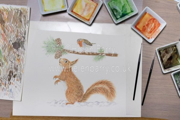 Squirrel looking up at a robin on a Christmas greetings card