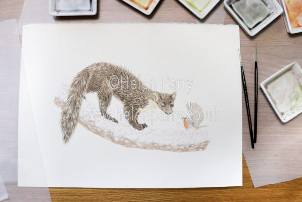 Pine marten looking down at a robin on a Christmas greetings card