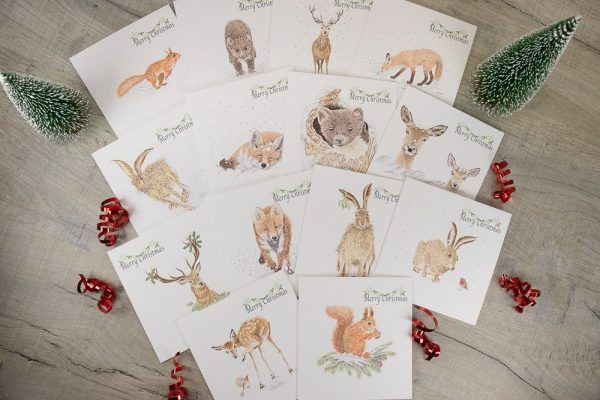 Assorted wildlife on Christmas greetings cards