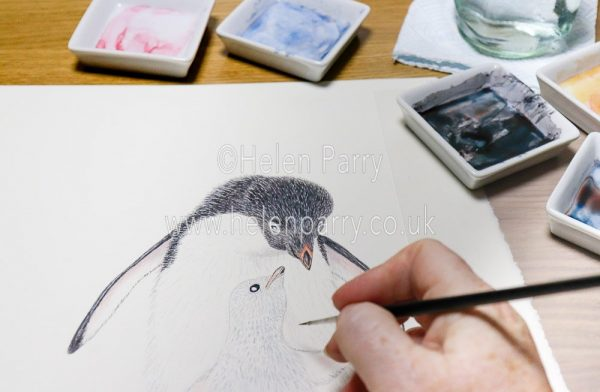 Watercolour painting of two penguins on a Christmas greetings card