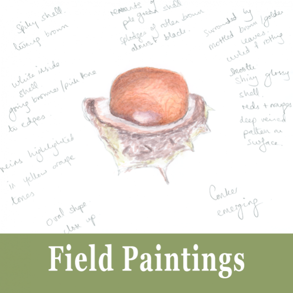 Field Paintings