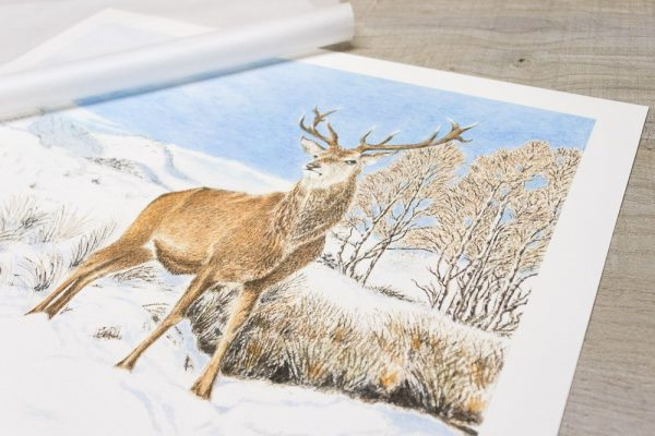 Stag standing in snow Giclée print