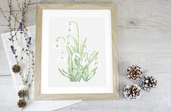 Snowdrop Watercolour Painting in an Oak Frame - Helen Parry Watercolour Artist