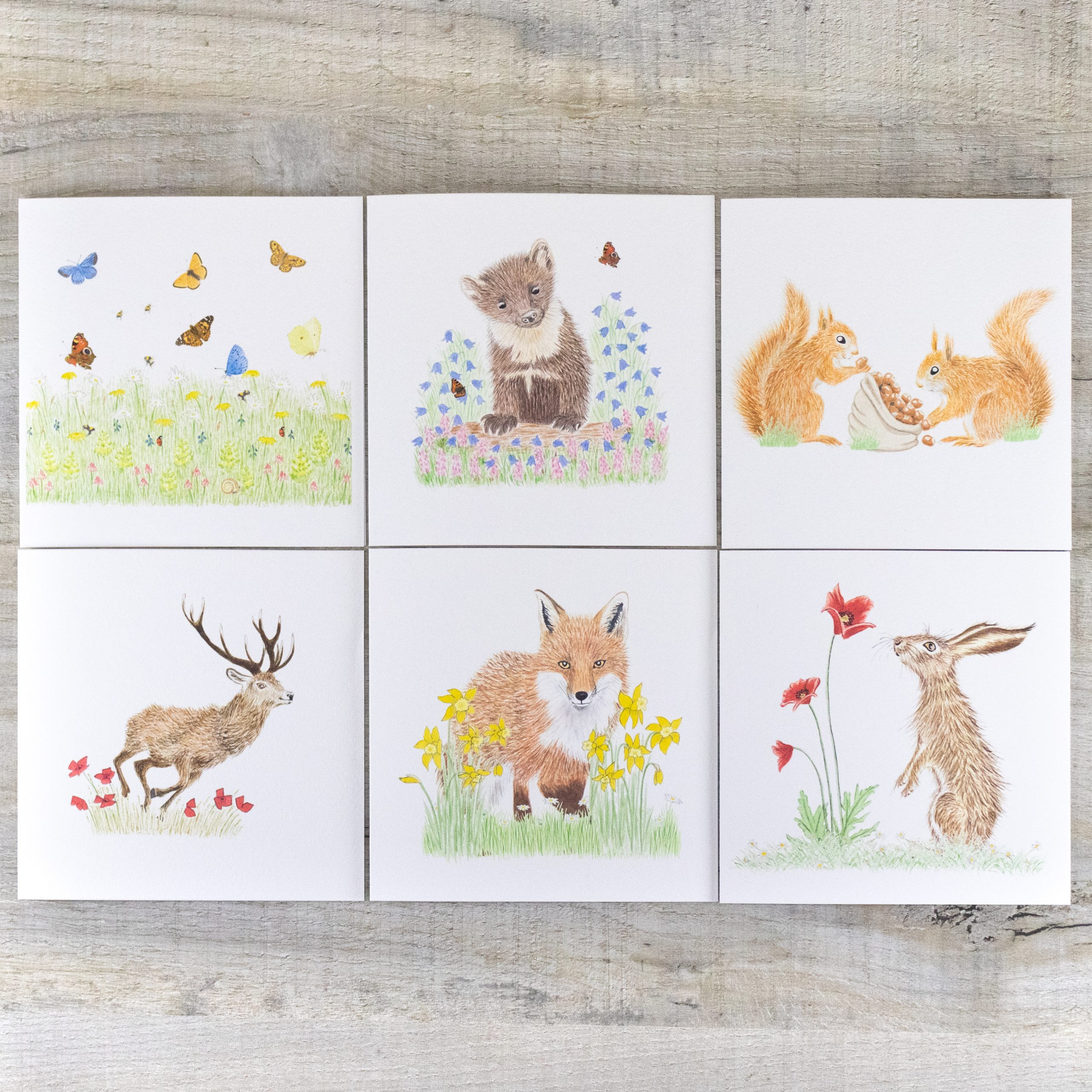Mixed Card Pack 1