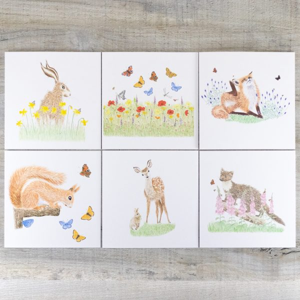Mixed Card Pack 2