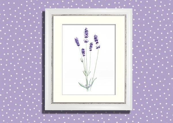 Lavender painting with white frame